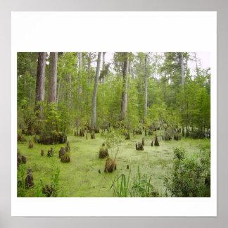 Natureza Posters