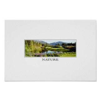 natureza pôster