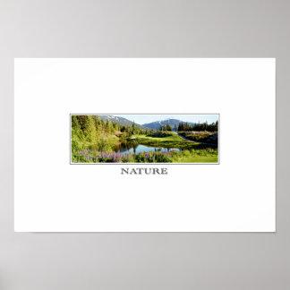 natureza poster