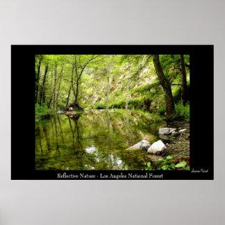 Natureza reflexiva poster