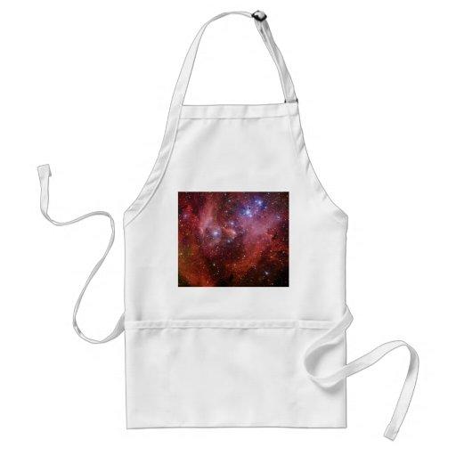Nebulosa Running do CEN do Lambda da nebulosa da g Aventais