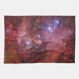 Nebulosa Running do CEN do Lambda da nebulosa da g Panos De Prato