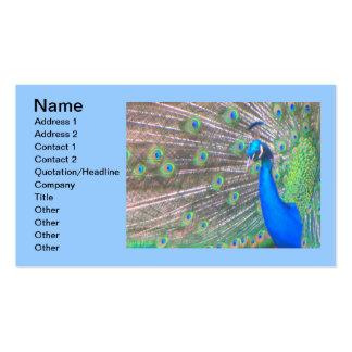 Negócio animal do escritório da arte do pavão das  modelos cartoes de visitas