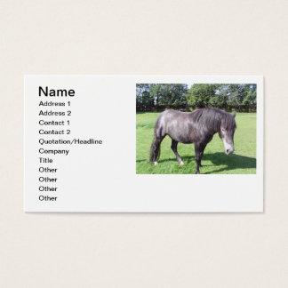 Negócio do veterinário cartão de visita