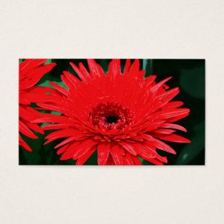 Negócio floral preto e vermelho cartão de visitas