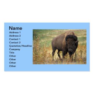 Negócio indiano do escritório da arte animal do bú cartões de visitas