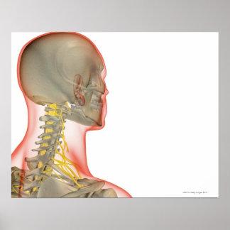 Nervos do pescoço 2 poster