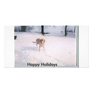 neve do biscoito, boas festas cartão com foto