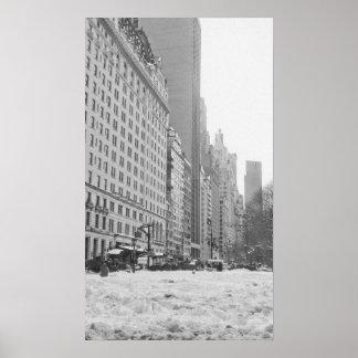 Neve no Central Park Pôsteres