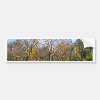 New York - Central Park Adesivo Para Carro
