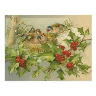 Ninho dos pássaros do natal vintage cartão postal