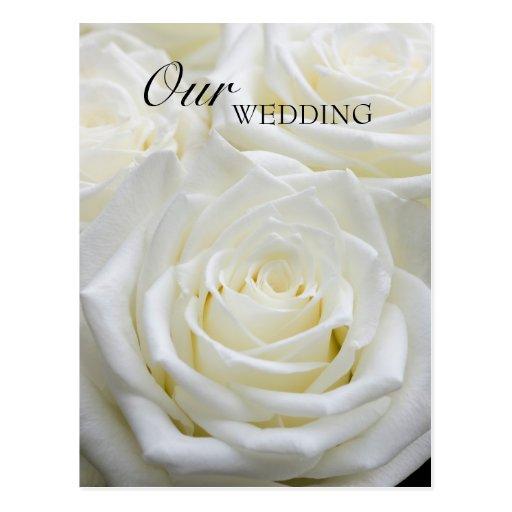 Nosso cartão do casamento cartões postais