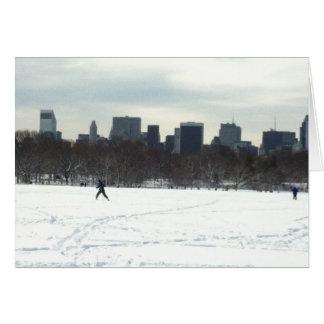 Notecard: O grande gramado, Central Park, New York Cartão De Nota