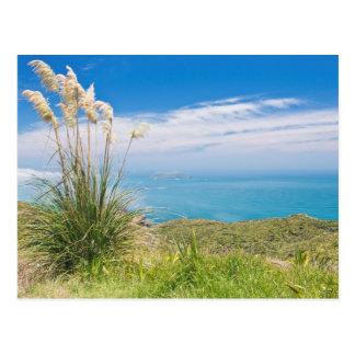 Nova Zelândia, ilha norte, cabo Reinga Cartão Postal