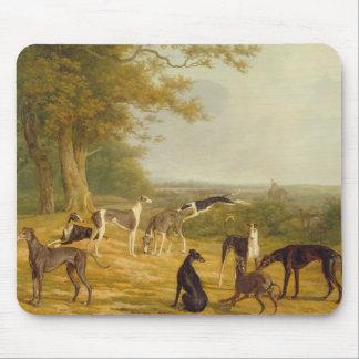 Nove galgos em uma paisagem (óleo em canvas) mouse pad
