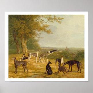 Nove galgos em uma paisagem (óleo em canvas) posteres