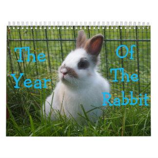 O ano do calendário do coelho