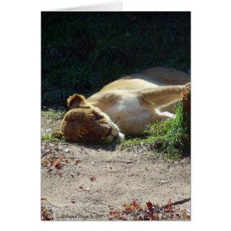 O antro dos leões cartão comemorativo