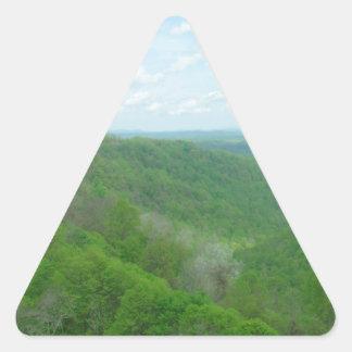 O Appalachian bonito negligencia Adesivo Triangular
