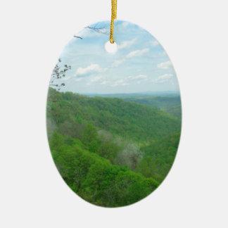O Appalachian bonito negligencia Ornamento De Cerâmica Oval
