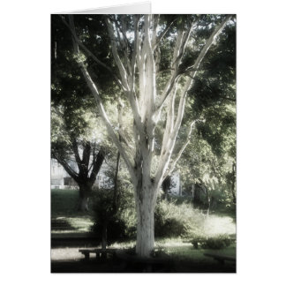 O árbol do EL de L'arbre do árvore da árvore A Cartão Comemorativo