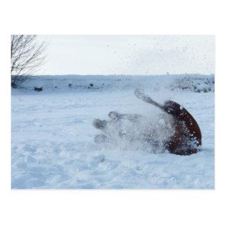 O banho da neve - cartão cartão postal