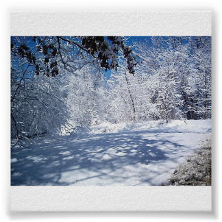 O Beleza-Inverno da natureza Poster