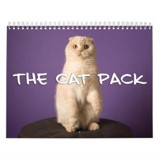 O bloco do gato calendário