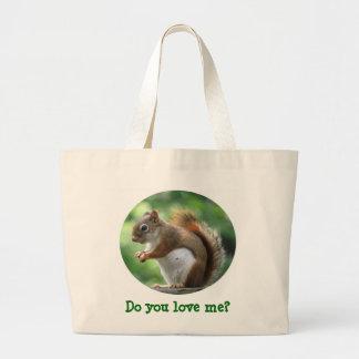 O bolsa do esquilo vermelho