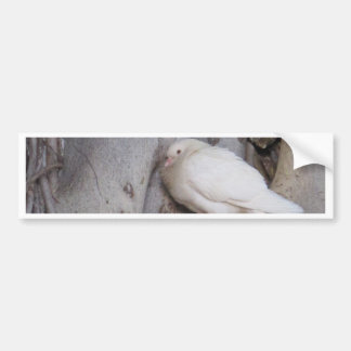 O branco carnudo mergulhou na árvore adesivo para carro