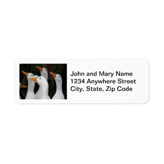 O branco Ducks etiquetas de endereço do remetente