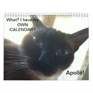 O calendário de Apollo