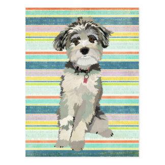 O cão azul listra o cartão cartão postal