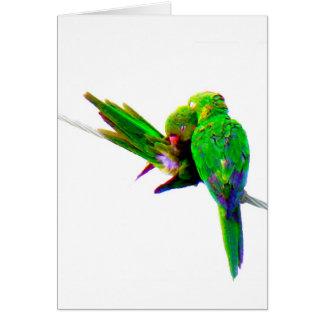 O CARTÃO de Birds~ do ~Love, PERSONALIZA-O!