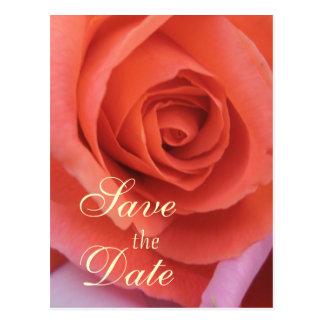 O casamento Peachy aumentou Cartão Postal