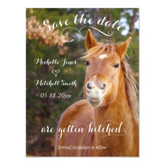 O cavalo de sorriso salvar os convites magnéticos