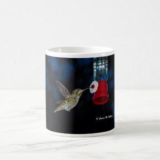 O colibri de Anna no alimentador Caneca