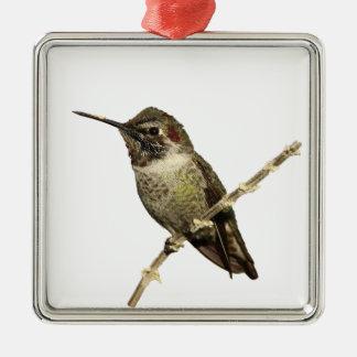 O colibri de Anna Ornamento Quadrado Cor Prata