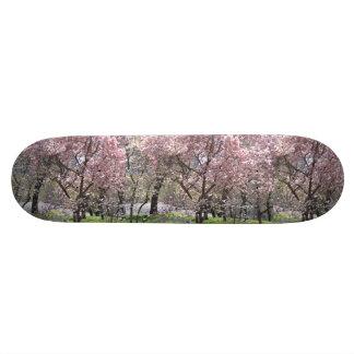 O conselho da cereja de Yoshino Shape De Skate 18,1cm