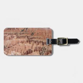 O deserto crava a cena tag de bagagem