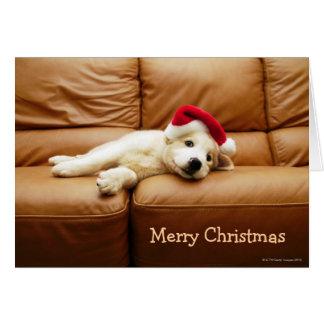 O filhote de cachorro veste um chapéu do Natal e o Cartão Comemorativo