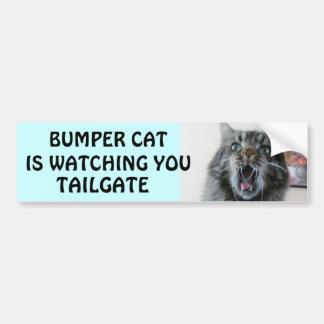 O gato abundante está olhando a BAGAGEIRA 7 Adesivo Para Carro