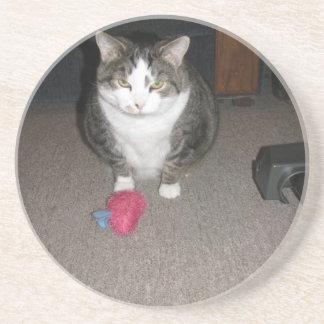 O gato gordo mal-humorado não é divertido porta copo