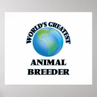 O grande criador animal do mundo poster