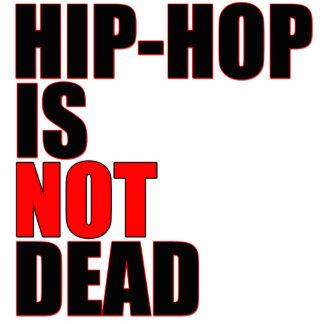O hip-hop não é a corrente 3D chave inoperante Escultura Foto
