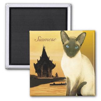 O ímã Siamese Ima