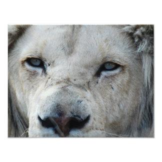 O leão escuta minha pulsação do coração África Convite 10.79 X 13.97cm