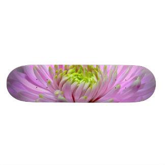 O Lilac da menina/o skate dália da lavanda