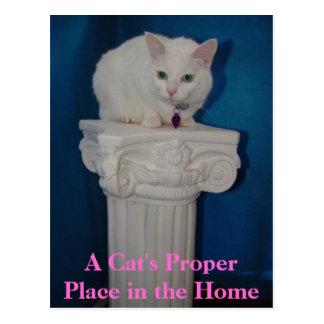 O lugar apropriado do gato na casa cartão postal