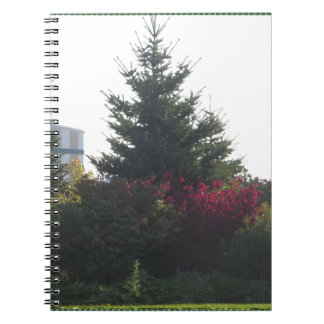 O modelo das flores da árvore dos presentes dos cadernos espiral